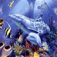 Under the Sea Murals